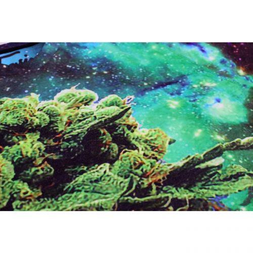 """Мужской свитшот с рисунком """"Space Weed"""" FUSION"""